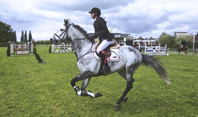 equestrian-banner2